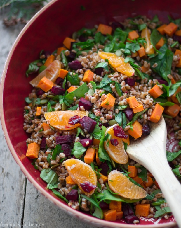 Winter Wheat Berry Salad - Whole Food, Plant-Based, Dairy-Free, Nut-Free, Vegan